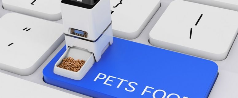 Top 5 Best Automatic Cat Feeder For Wet Food 2019